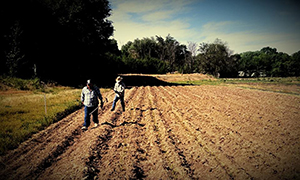 Two Farmers Walking Plowed Field