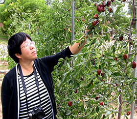 Shengrui Yao Touching Fruit Tree